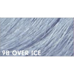 Pravana COLOR LUSH _ 9B OVER ICE _ 2 oz