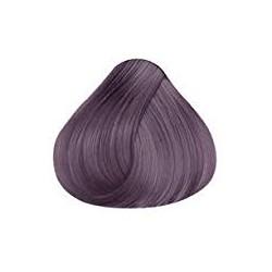 7.7 Violet Arsenal